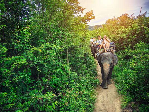 19 Tage Beste China und Thailand Reise