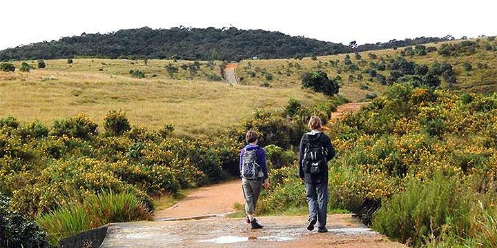 Horton Plain National Park Trekking