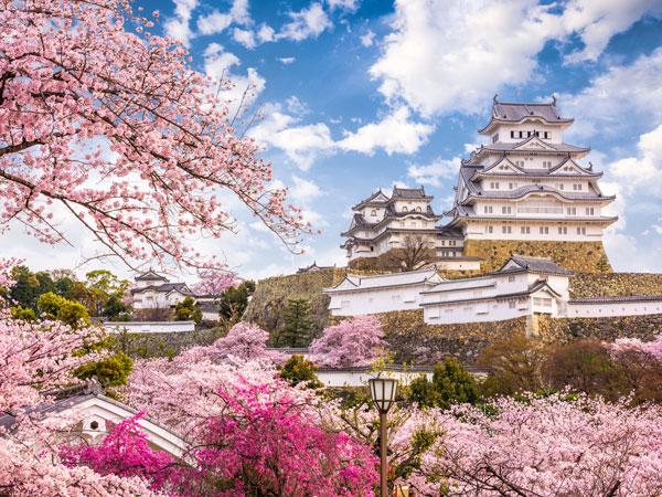 Osaka Castle Tower in Japan
