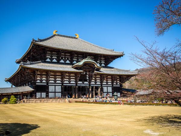 Todai-ji Temple in Japan